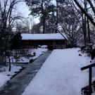 Snowy Courtyard