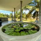 Megaloop vila garden view