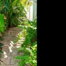 Las Olas Guesthouse @ 15th Avenue