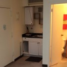 Bryant Park Studio Apartment Times SQ South