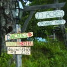 D Acres of NH