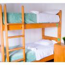 Red Llama Eco Hostel - Lima
